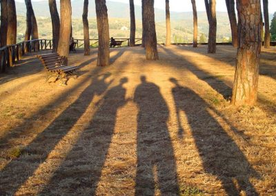Casa Del Mulino shadows in the park by Arezzo Cathedral