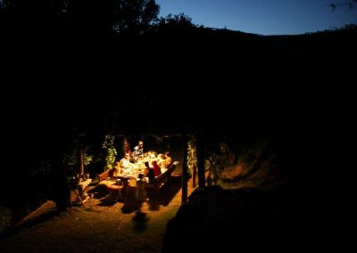 dining in the garden at night