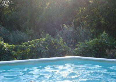refreshing dip in the pool