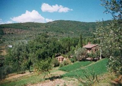setting of the house in valley