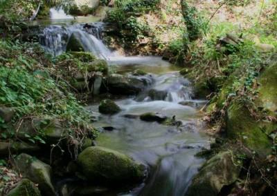 stream_small